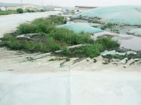 污水池、粪池清理